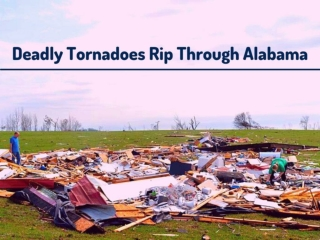 Deadly tornadoes rip through Alabama