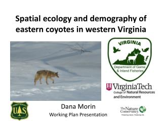 Spatial  e cology and demography of eastern coyotes in western Virginia