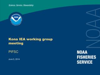 Kona IEA working group meeting