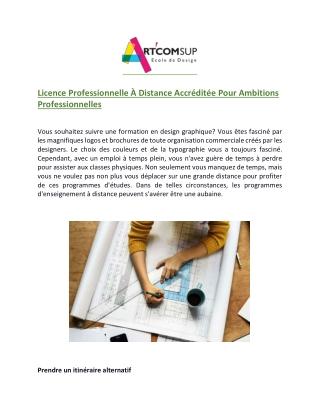 Licence Professionnelle À Distance Accréditée Pour Ambitions Professionnelles