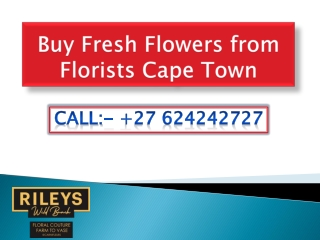 Buy Fresh Flowers from Florists Cape Town