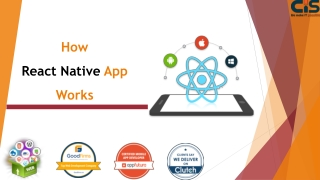 How React Native App Works