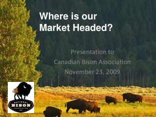 Where is our  Market Headed?