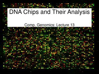 DNA Chips and Their Analysis Comp. Genomics: Lecture 13