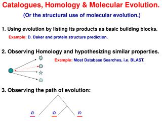 Catalogues, Homology & Molecular Evolution.
