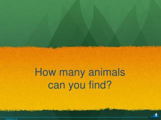 How many animals  can you find?