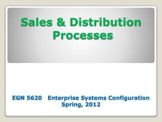 Sales & Distribution  Processes EGN 5620   Enterprise Systems Configuration Spring, 2012