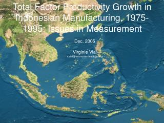Total Factor Productivity Growth in Indonesian Manufacturing, 1975-1995: Issues in Measurement