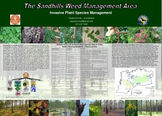 The Sandhills Weed Management Area