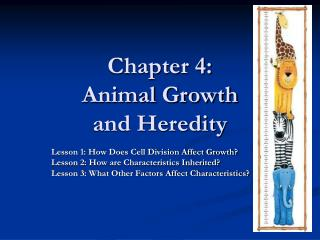 Chapter 4: Animal Growth  and Heredity