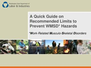 A Quick Guide on Recommended Limits to Prevent WMSD* Hazards