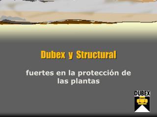 Dubex y Structural