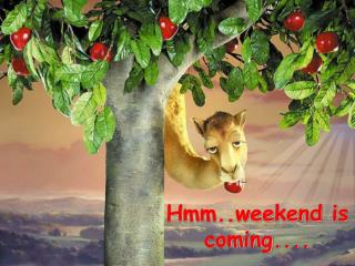 Hmm..weekend is coming....