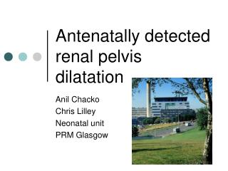 Antenatally detected renal pelvis dilatation