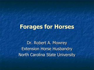 Forages for Horses