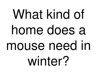 What kind of home does a mouse need in winter?