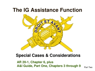 The IG Assistance Function