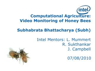 Computational Agriculture:  Video Monitoring of Honey Bees  Subhabrata Bhattacharya (Subh) Intel Mentors: L. Mummert R.