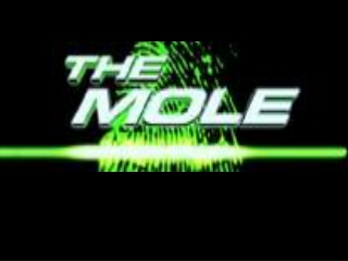 How big is a mole? (Not the animal, the other one.) - Daniel Dulek TED TALK