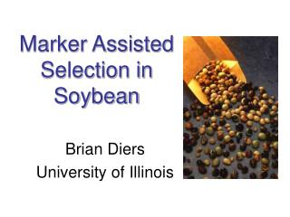 Marker Assisted Selection in Soybean