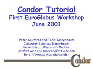 Condor Tutorial First EuroGlobus Workshop June 2001
