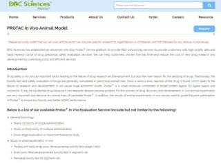 PROTAC In Vivo Animal Model