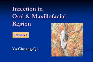 Infection in Oral & Maxillofacial Region
