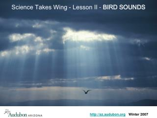 Science Takes Wing - Lesson  II - BIRD SOUNDS