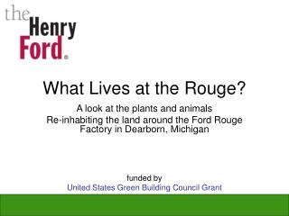 What Lives at the Rouge?