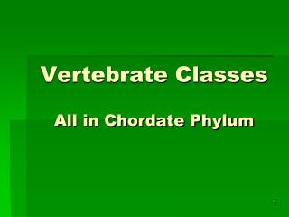 Vertebrate Classes All in Chordate Phylum