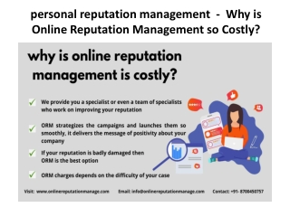 personal reputation management  -  Why is Online Reputation Management so Costly