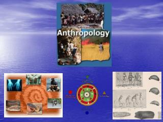 What is Anthropology? Anthropology is the broad study of humankind around the world and throughout time.