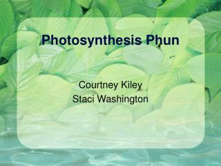 Photosynthesis Phun