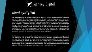 Monkeydigital