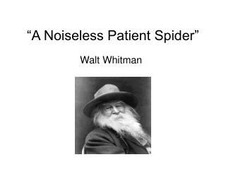 """""""A Noiseless Patient Spider"""""""