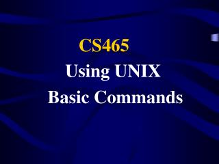 Using UNIX  Basic Commands