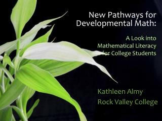 New Pathways  for Developmental  Math: A Look into  Mathematical Literacy  for College Students