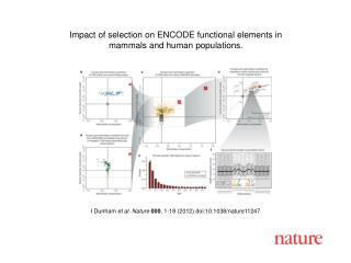 I Dunham  et al. Nature 000 ,  1-18  (2012) doi:10.1038/nature11247