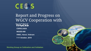 Report and Progress on WGCV Cooperation with WGISS