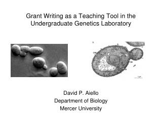 Grant Writing as a Teaching Tool in the Undergraduate Genetics Laboratory