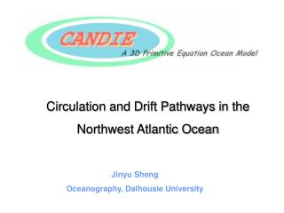 Circulation and Drift Pathways in the  Northwest Atlantic Ocean