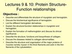 Lectures 9  10: Protein Structure-Function relationships