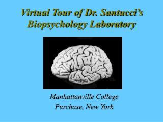 Virtual Tour of Dr. Santucci's Biopsychology Laboratory