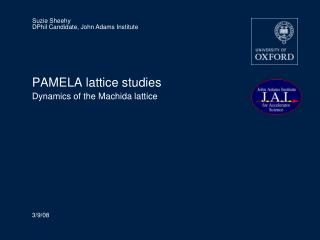 PAMELA lattice studies