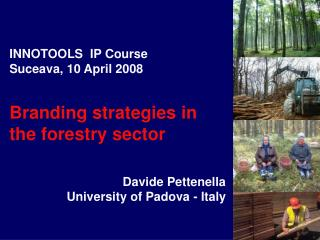 INNOTOOLS  IP Course Suceava, 10 April 2008 Branding strategies in the forestry sector Davide Pettenella University of P