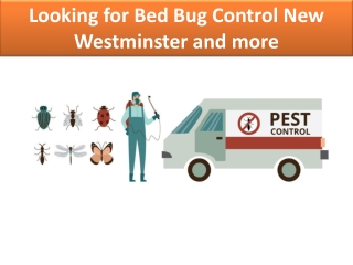 Bed Bug Control New Westminster