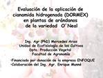 Evaluaci n de la aplicaci n de  cianamida hidrogenada DORMEX  en plantas de ar ndanos  de la variedad  O Neal