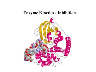 Enzyme Kinetics - Inhibition