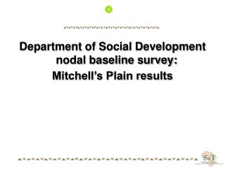 Department of Social Development nodal baseline survey: Mitchell's Plain results