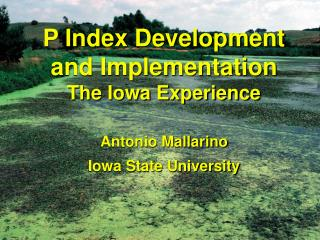 P Index Development and Implementation The Iowa Experience
